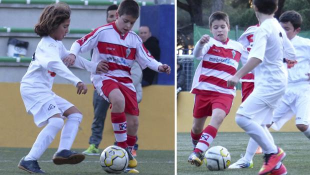 futbolcarrasco3alevinmalaga3webatleticomarbella